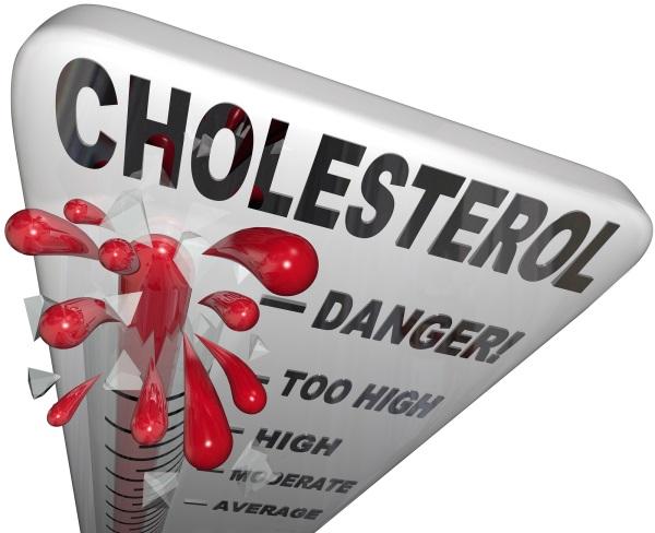 холестерин в крови 4.92