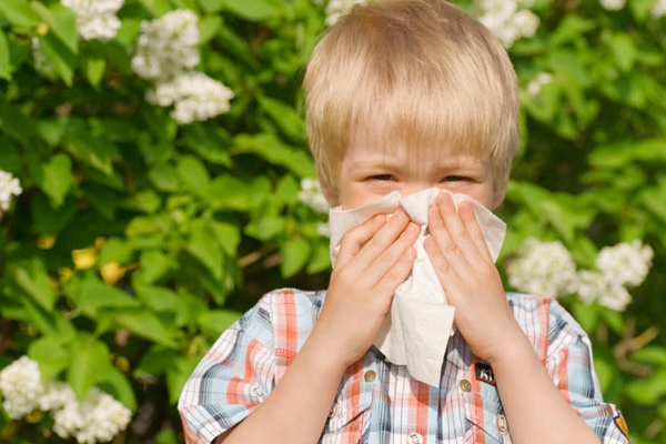 Аллергический ринит лечение у детей