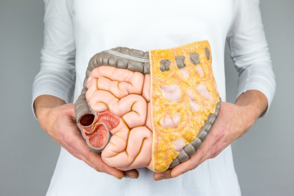 Болят кишки внизу живота - причины и симптомы заболеваний кишечника