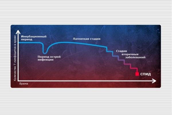 Графическое изображение стадий ВИЧ