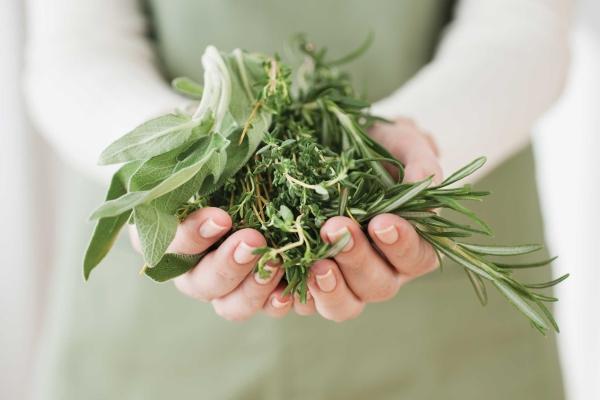 Какие целебные травы помогают от псориаза на голове