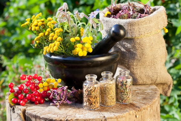 Васкулит: симптомы, лечение народными средствами в домашних условиях